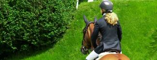 English and Horse riding courses