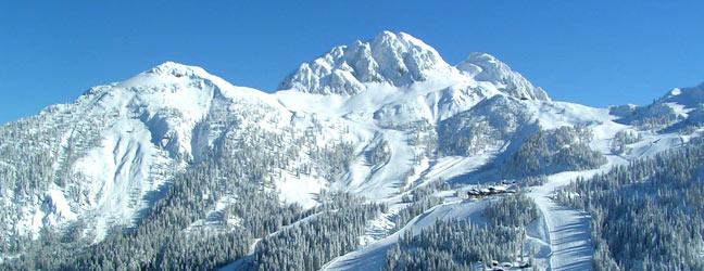 English + Ski