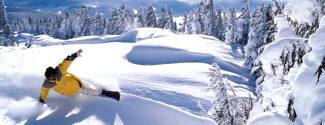 English and Ski courses