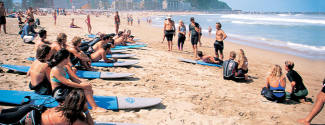 English and Surf courses
