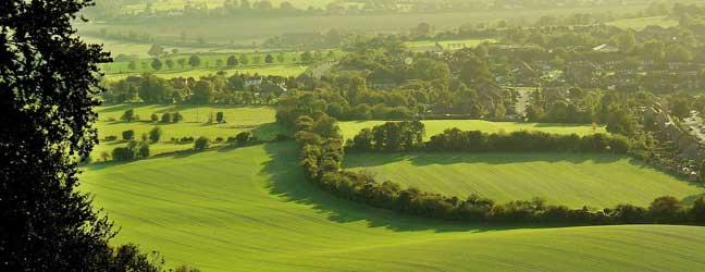 Buckinghamshire - Courses in the teacher's home Buckinghamshire for a junior