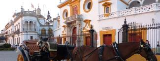Programmes in Spain for an adult Seville