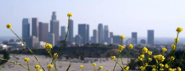 Los Angeles - Language studies abroad Los Angeles